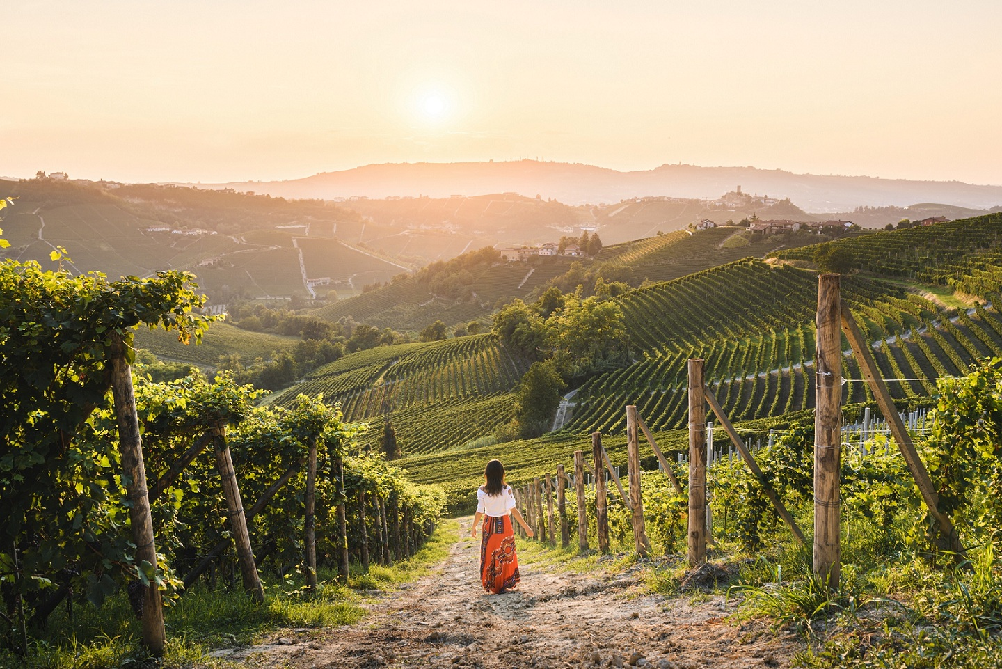 14 #Piemontestories: women and men of Langhe-Roero and Monferrato with the Virtual  Tour project | VisitPiemonte